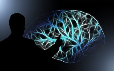 Le cerveau est-il un ordinateur comme les autres ?