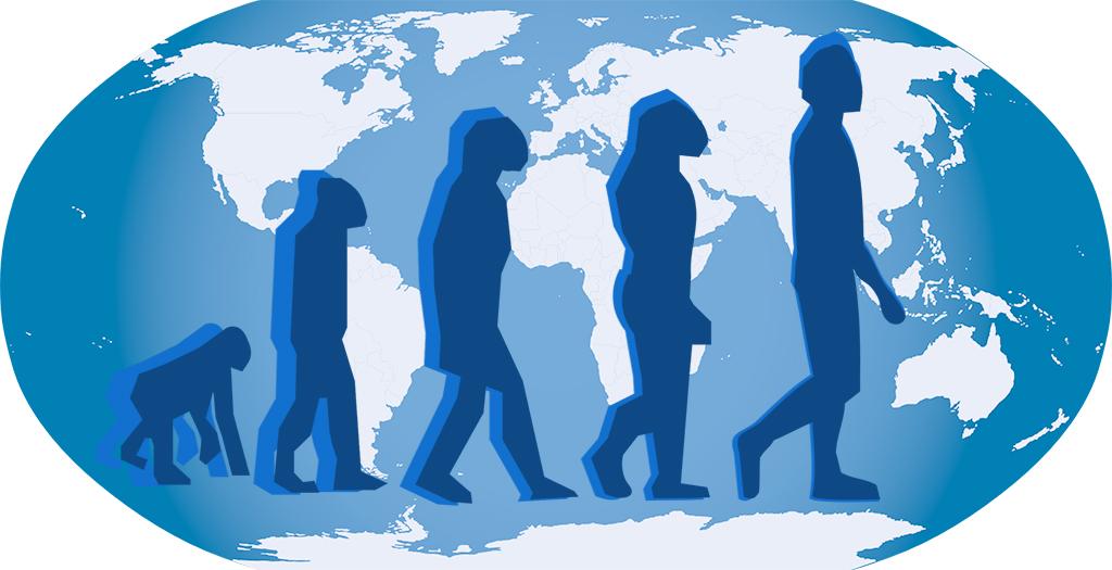 Origines et évolution de l'Homme